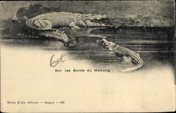 Ak Vietnam, Sur les Bords du Mékong, Siam Krokodil