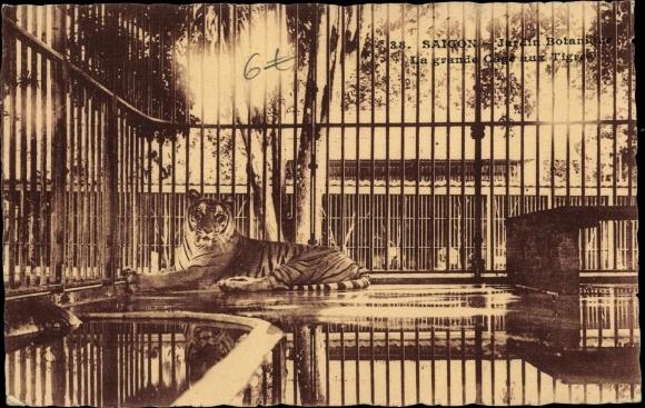 Ak Saigon Cochinchine Vietnam, Jardin Botanique, La grande Cage aux Tigres, Tiger