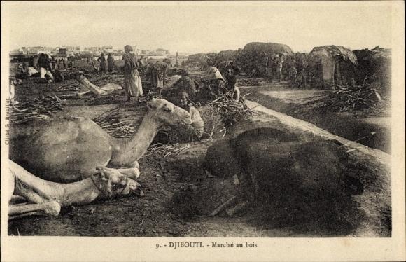 Ak Djibouti Dschibuti, Marché au bois, Holzmarkt, Kamele