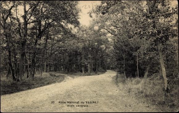 Ak Le Vesinet Saone et Loire, Asile National, Allée Centrale