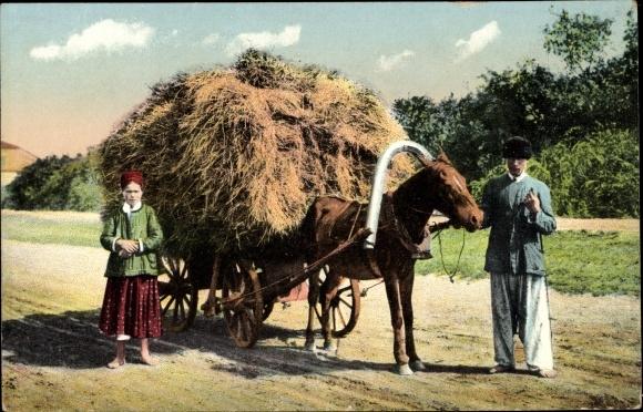 Ak Ukraine, les types et les vues du Ukrains, Bauern in Volkstrachten, Pferdefuhrwerk