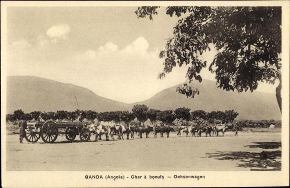 Ak Ganda Angola, Char à boeufs, Ochsenwagen