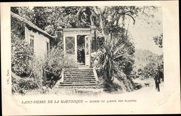 Ak Saint Pierre Martinique, Entrée du Jardin des Plantes