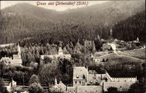 Ak Sokołowsko Görbersdorf Schlesien, Totalansicht vom Ort