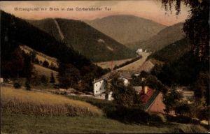 Ak Sokołowsko Görbersdorf Schlesien, Blitzengrund, Görbersdorfer Tal, Wohnhäuser