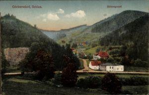 Ak Sokołowsko Görbersdorf Schlesien, Blitzengrund, Wohnhäuser im Tal