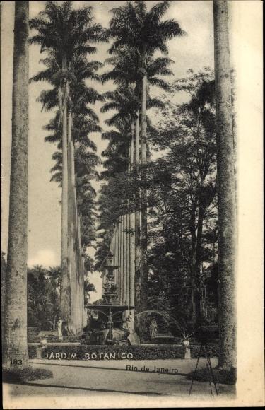 Ak Rio de Janeiro Brasilien, Jardim Botanico, Brunnen, Palmen