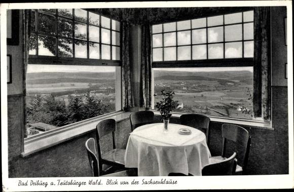Ak Bad Driburg in Westfalen, Blick von der Sachsenklause