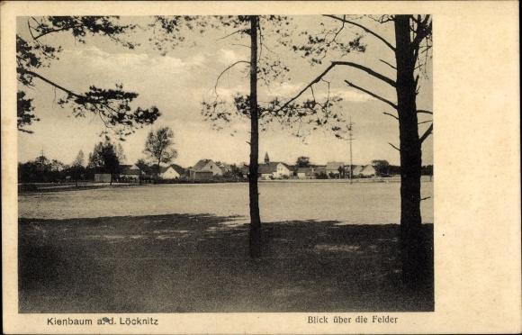 Ak Kienbaum Grünheide in der Mark, Blick über die Felder, Panorama vom Ort 0