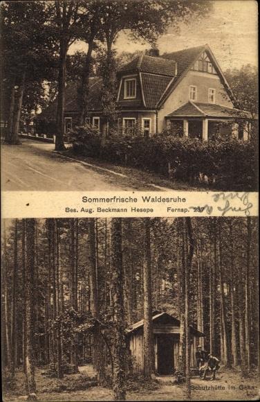 Ak Hesepe Bramsche, Sommerfrische Waldesruhe von Aug. Beckmann aus Hesepe, Hütte im Gehn 0