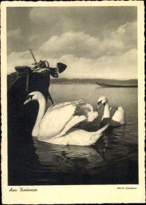Künstler Ak Winterer, Anne, Zwei Schwäne auf dem Bodensee