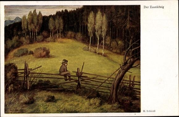 Künstler Ak Schiestl, Matthäus, Der Zaunkönig, Junge auf einem Zaun sitzend