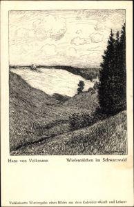 Künstler Ak Volkmann, Hans von, Wiesentälchen im Schwarzwald