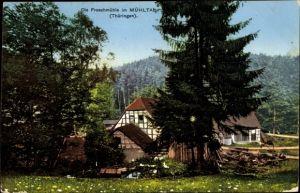 Ak Eisenberg in Thüringen, Froschmühle im Mühltal, Waldpartie