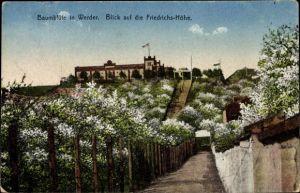 Ak Werder an der Havel, Baumblüte, Friedrichshöhe