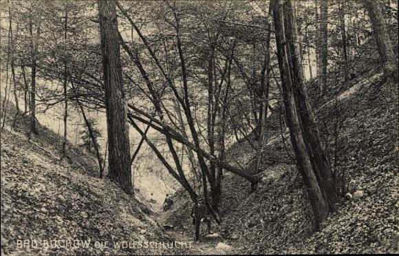 Ak Buckow in der Märkischen Schweiz, Partie in der Wolfsschlucht, Personen, Bäume
