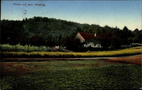 Ak Wellingholzhausen Melle in Niedersachsen, Partie auf dem Beutling, Fachwerkhaus