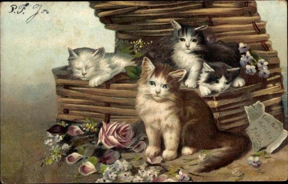 Künstler Ak Vier Hauskatzen, Korb, Blumen