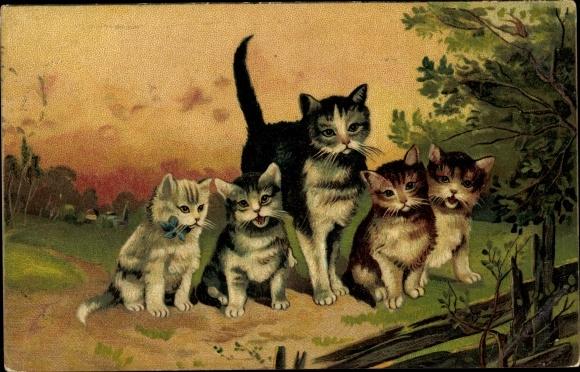 Künstler Ak Fünf Hauskatzen, Mutter mit Kitten
