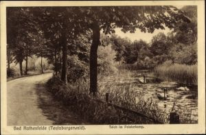 Ak Bad Rothenfelde am Teutoburger Wald, Teich im Palsterkamp, Schwäne, Waldweg