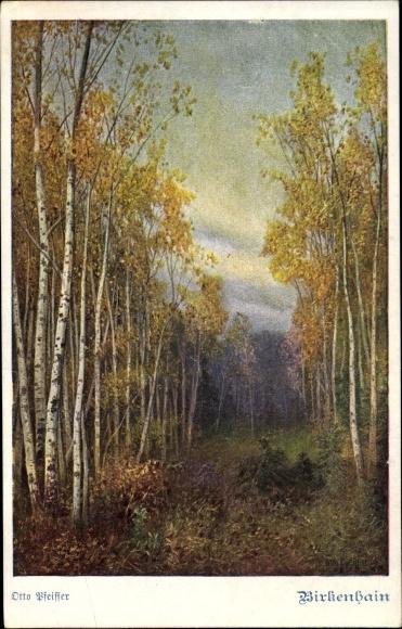 Künstler Ak Pfeiffer, Otto, Birkenhain, Landschaftsansicht mit Bäumen, Deutscher Schulverein 1060