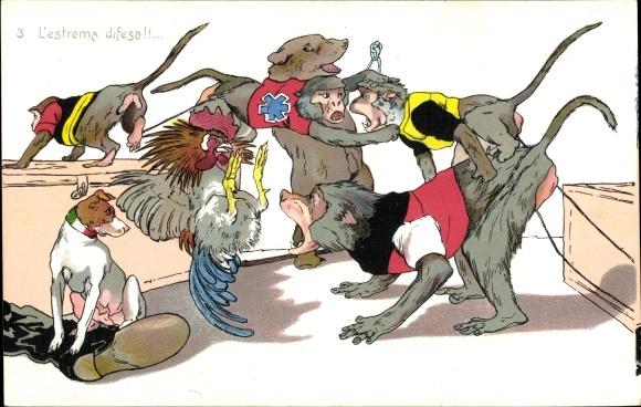 Künstler Ak L'estrema difesa, Affen, Terrier, Hahn, Streit, Bär, Allegorisch, Deutschland,Frankreich