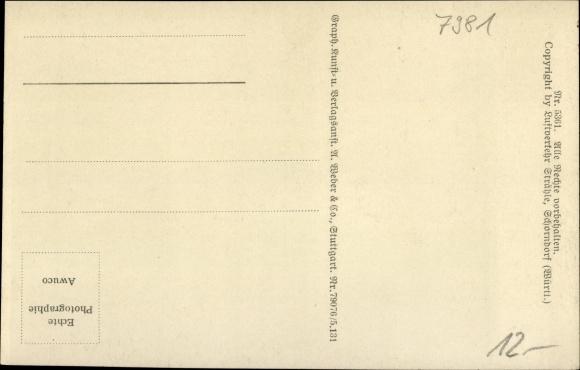 Ak Waldburg BW, Fliegeraufnahme vom Ort, Zeppelin Luftschiff 1