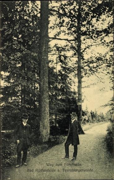 Ak Bad Rothenfelde am Teutoburger Wald, Weg zum Forsthaus 0