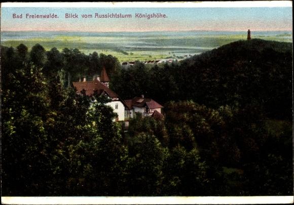 Ak Bad Freienwalde an der Oder, Teilansicht vom Ort, Blick vom Aussichtsturm Königshöhe