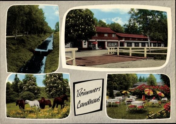 Ak Friedrichsdorf Langenhausen Gnarrenburg in Niedersachsen, Brümmers Landhaus, Shetland Ponys 0