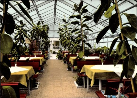 Ak Sieber Herzberg am Harz, Cafe Restaurant Orangerie, Inh. Fam. May. Wintergarten 0