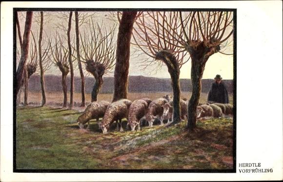 Künstler Ak Herdtle, Vorfrühling, Hirte mit Schafherde, Weidenbäume 0
