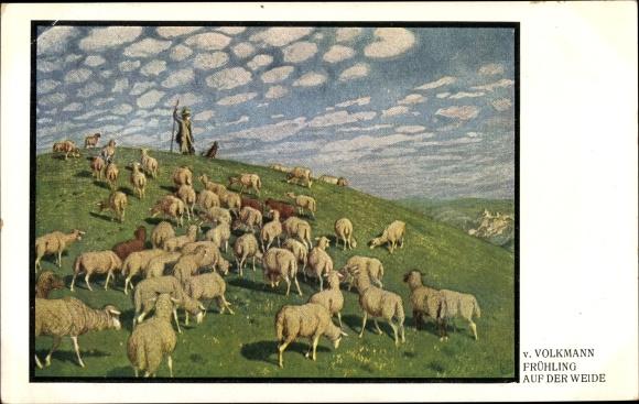 Künstler Ak Volkmann, von, Frühling auf der Weide, Hirte mit Schafherde 0
