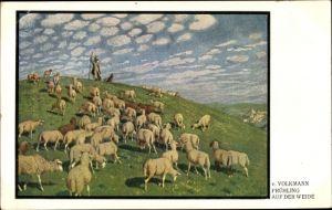 Künstler Ak Volkmann, von, Frühling auf der Weide, Hirte mit Schafherde