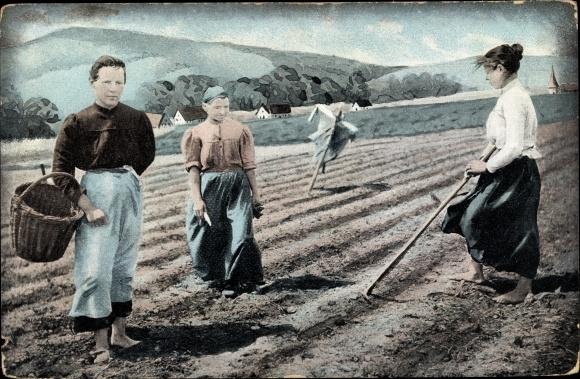 Künstler Ak Drei Frauen auf einem Feld, Vogelscheuche, Landwirtschaft