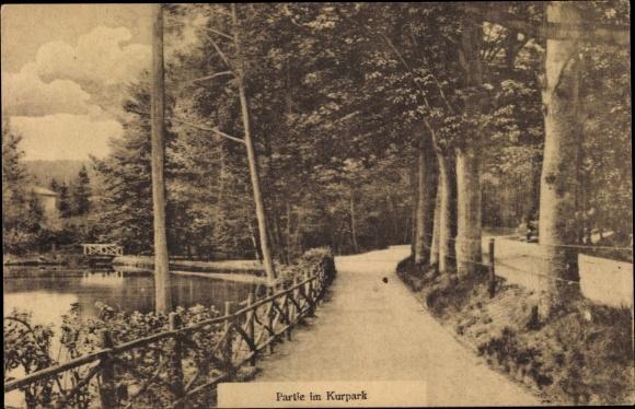 Ak Bad Freienwalde an der Oder, Partie im Kurpark, Teich, Weg 0