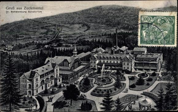 Künstler Ak Zlaté Hory Zuckmantel Reg. Olmütz, Dr. Schweinburg Sanatorium, Panorama 0