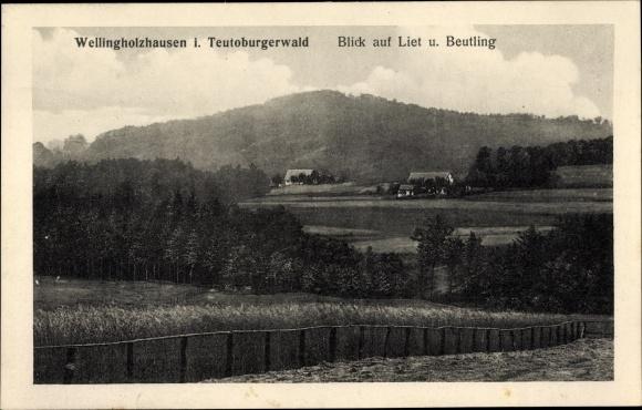 Ak Wellingholzhausen Melle in Niedersachsen, Liet, Beutling, Panorama vom Ort 0