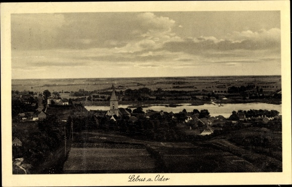 Ak Lebus an der Oder, Panorama vom Ort 0
