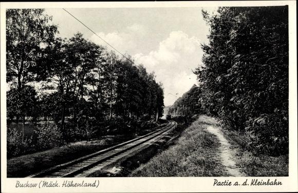 Ak Buckow in der Märkischen Schweiz, Strecke der Kleinbahn, Waldpartie 0