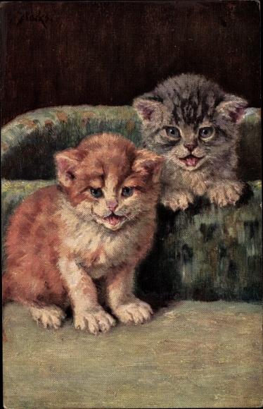 Künstler Ak Mack, M., Zwei Hauskatzen, Kitten, Korb