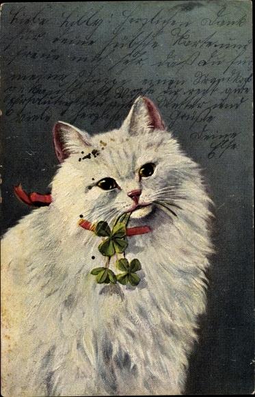 Künstler Ak Weiße Hauskatze mit Kleeblättern im Maul, Rotes Halstuch