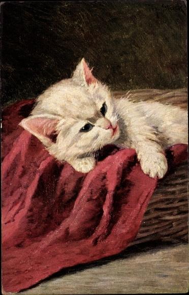 Künstler Ak Weiße Hauskatze, Rote Decke, Korb, Kätzchen, Kitten