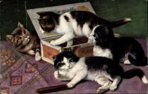 Künstler Ak Vier junge Katzen auf einer Zigarrenkiste, Zigarre