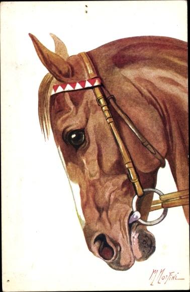 Künstler Ak Cavallo Arabo, Pferdeportrait, braunes Pferd mit Zaumzeug