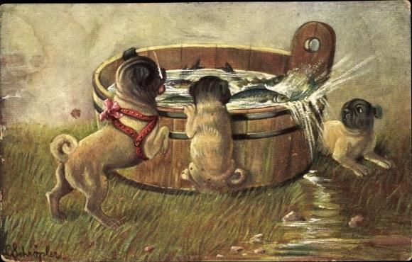Künstler Ak Drei kleine Hunde betrachten Fische in einem Holztrog