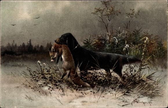 Künstler Ak Müller, M. jun., Jagdhund mit gefangenem Fuchs im Maul