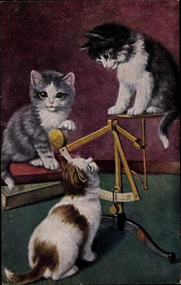Künstler Ak Drei junge Katzen spielen auf einer Waage
