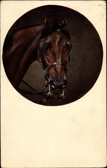 Künstler Ak Pferdeportrait, braunes Pferd mit Zaumzeug