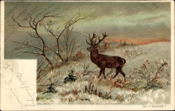 Litho Hochwild, Reh auf einer Wiese, kahle Bäume, Trenkler Ser. 4 A Nr. 4